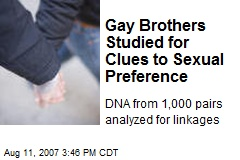 Gay Brothers Studied for Clues to Sexual Preference