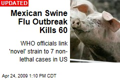 Mexican Swine Flu Outbreak Kills 60