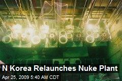 N Korea Relaunches Nuke Plant