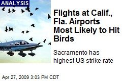 Flights at Calif., Fla. Airports Most Likely to Hit Birds