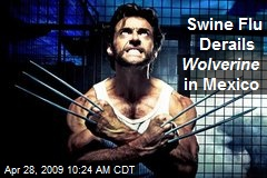 Swine Flu Derails Wolverine in Mexico
