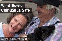 Wind-Borne Chihuahua Safe