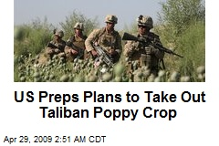 US Preps Plans to Take Out Taliban Poppy Crop