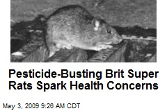 Pesticide-Busting Brit Super Rats Spark Health Concerns