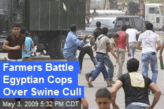 Farmers Battle Egyptian Cops Over Swine Cull
