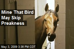 Mine That Bird May Skip Preakness