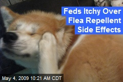 Feds Itchy Over Flea Repellent Side Effects