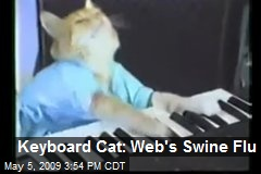 Keyboard Cat: Web's Swine Flu
