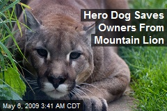 Hero Dog Saves Owners From Mountain Lion