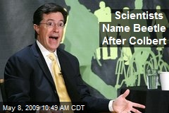 Scientists Name Beetle After Colbert