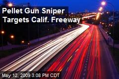 Pellet Gun Sniper Targets Calif. Freeway