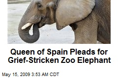 Queen of Spain Pleads for Grief-Stricken Zoo Elephant