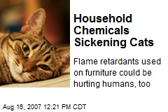Household Chemicals Sickening Cats