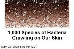 1,000 Species of Bacteria Crawling on Our Skin