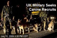 UK Military Seeks Canine Recruits