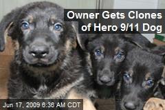 Owner Gets Clones of Hero 9/11 Dog