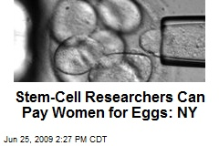 Stem-Cell Researchers Can Pay Women for Eggs: NY
