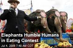 Elephants Humble Humans in Eating Contest