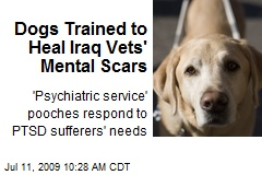 Dogs Trained to Heal Iraq Vets' Mental Scars