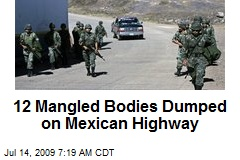 12 Mangled Bodies Dumped on Mexican Highway
