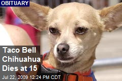 Taco Bell Chihuahua Dies at 15
