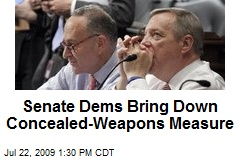 Senate Dems Bring Down Concealed-Weapons Measure