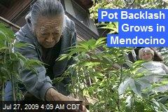 Pot Backlash Grows in Mendocino