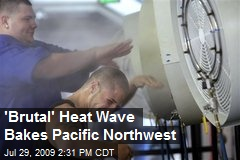 'Brutal' Heat Wave Bakes Pacific Northwest