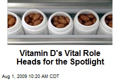 Vitamin D's Vital Role Heads for the Spotlight