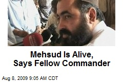 Mehsud Is Alive, Says Fellow Commander