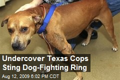 Undercover Texas Cops Sting Dog-Fighting Ring