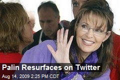 Palin Resurfaces on Twitter