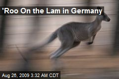 'Roo On the Lam in Germany