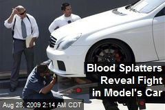 Blood Splatters Reveal Fight in Model's Car