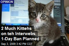 2 Much Kittehs on teh Interwebs; 1-Day Ban Planned
