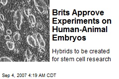 Brits Approve Experiments on Human-Animal Embryos