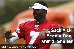Sack Vick, Feed a Dog: Animal Shelter