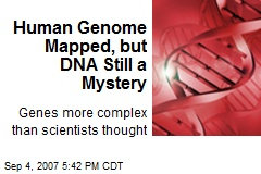 Human Genome Mapped, but DNA Still a Mystery