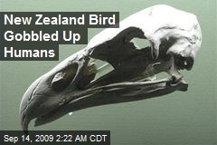 New Zealand Bird Gobbled Up Humans