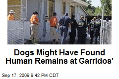 Dogs Might Have Found Human Remains at Garridos'