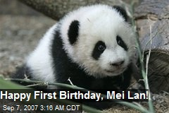 Happy First Birthday, Mei Lan!