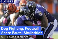 Dog Fighting, Football Share Brutal Similarities