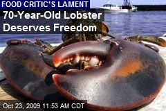 70-Year-Old Lobster Deserves Freedom