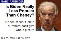 Is Biden Really Less Popular Than Cheney?