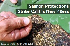 Salmon Protections Strike Calif.'s New '49ers