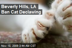Beverly Hills, LA Ban Cat Declawing