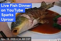 Live Fish Dinner on YouTube Sparks Uproar