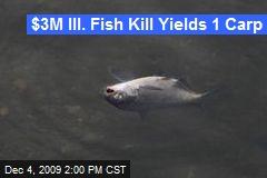 $3M Ill. Fish Kill Yields 1 Carp