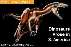 Dinosaurs Arose in S. America