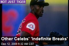 Other Celebs' 'Indefinite Breaks'